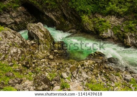 River in green forest in Canyon Vintgar, Triglav - Slovenia #1141439618