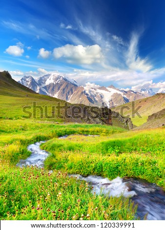 River in mountain valley with bright meadow Natural summer landscape