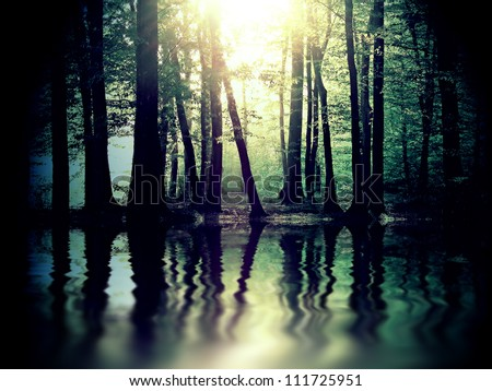 River in mysterious forest #111725951