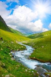 River in spring season
