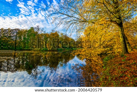 River in the autumn forest. Autumn river water. Autumn forest river view
