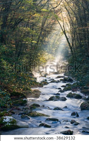 River in the Great Smoky Mountains National Park