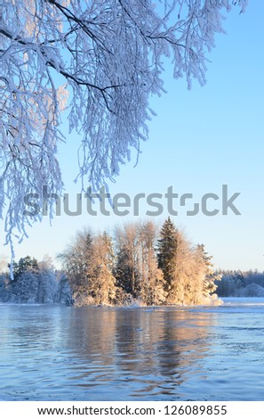 River in winter and tree branches covered with white frost at sunrise