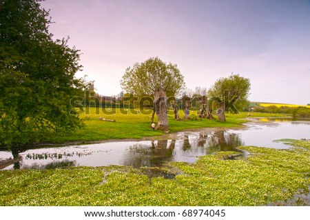 River Kennet not far from its source in Wiltshire England