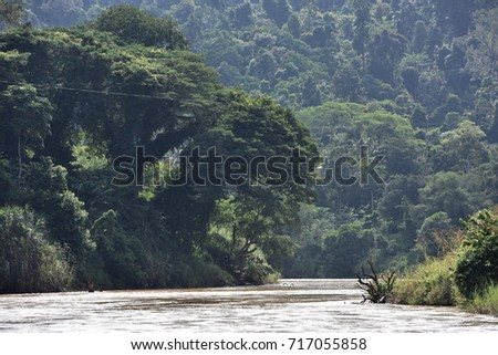 River near the forest. #717055858