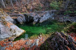 river pool in the autumn forest