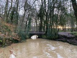 River running through woodland and under a small bridge.