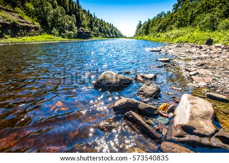 River stones in forest river water flowing landscape #573540835