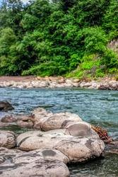 River stream among stones. The river flows quickly among the granite stones. On a summer day, green trees grow on the banks of the turbulent river. In the foreground there are stones by the river.