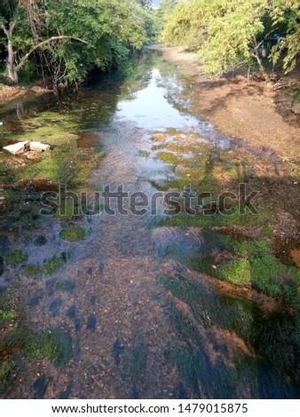 River stream, Rural river, Rural river view. #1479015875
