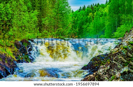 River waterfall flowing in forest. Rapid river flow. River stream in forrest