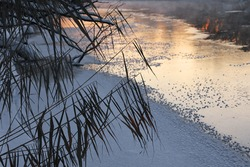 River winter landscape. Frost on ice. Fog over a non-freezing river at sunset.