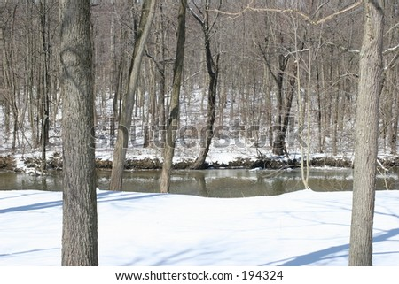 River & Winter Woods
