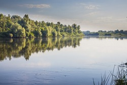 River with cane and trees on the riverside in the morning. Morning riverbank on a calm and clear summer morning. Desna river. Ukraine