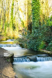 River with fast flowing water and splashing falls in a woods on a sunny day