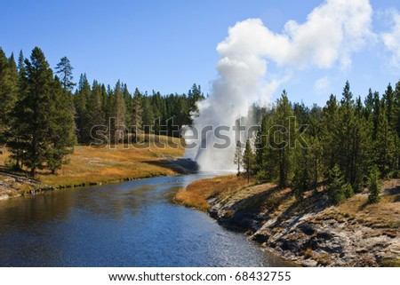 Riverside Geyser errupts on a summer afternoon in the Upper Geyser Basin.  Yellowstone National Park, Wyoming
