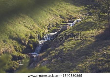 Rivulets of water run off cascade down . Mountain streamlet ストックフォト ©
