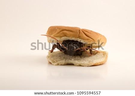Roach Burger roach motel