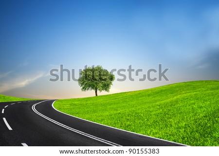 Road and green horizon