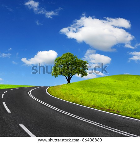 Road and green landscape