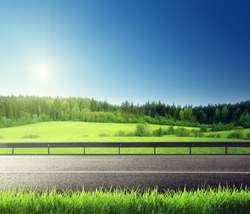 road and spring grass