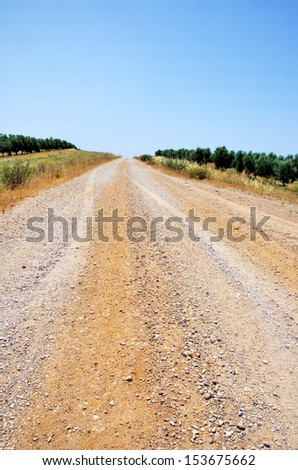 road at Alentejo, south of Portugal.