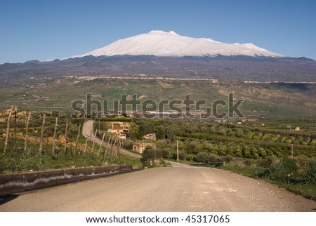 road crosses cultivated land and in the background the mount Etna cover by snow against the blue sky