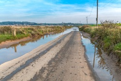 Road flooded by the tide. On the sides of the meadow. Thornham, UK, England.