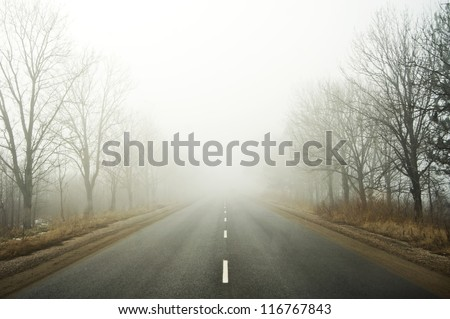 Road going in to the fog