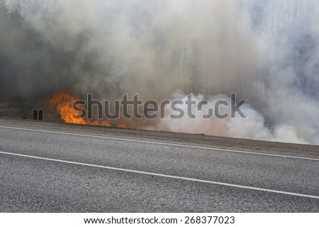 Road in fire and smoke, concept of natural disaster