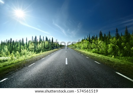 Road in forest, Sweden #574561519