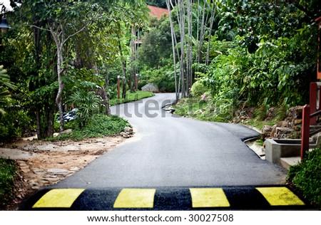 Road in green malaysia rainforest. Ecotourism.