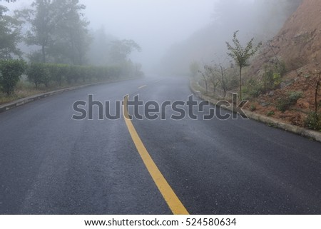 Road in heavy fog. A crooked road turn into mist. Full of mysterious, misty and dangerous feelings. #524580634