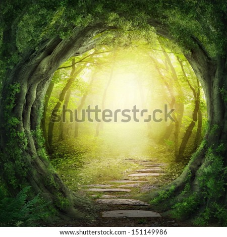 Shutterstock Road in magic dark forest