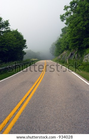 Road in misty forest, Shenandoah valley, Virginia