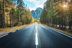 Road in summer forest at sunset in Italy. Beautiful mountain roadway, trees with green foliage and sunlight. Landscape with empty asphalt road through woodland, blue sky, high rocks. Travel in Europe