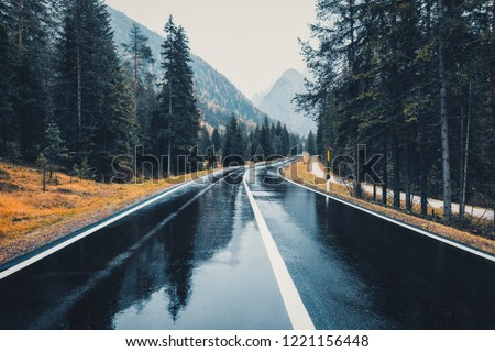 Road in the autumn forest in rain. Perfect asphalt mountain road in overcast rainy day. Roadway with reflection and pine trees in italian alps. Transportation. Empty highway in foggy woodland. Trip