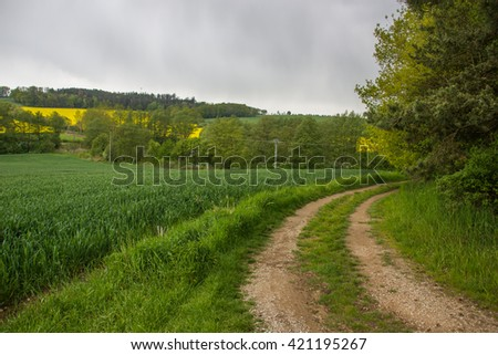Road in the countryside, Czech republic. #421195267