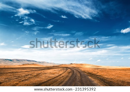 Road In the field and blue sky. Beautiful summer landscape. Creative toning effect #231395392