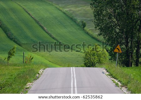 Road in the fields