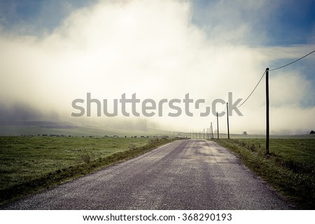 Stock Photo road in the fog with electrical poles lined
