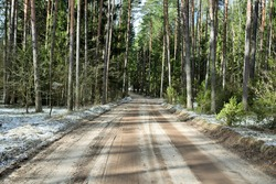 road in the forest covered with a small layer of snow
