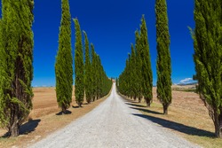Road in the Tuscany Italy - nature background