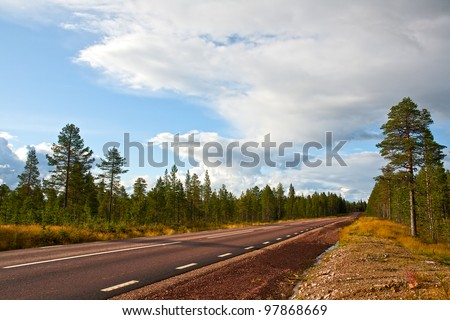 Road in the wood, leaving in a distance
