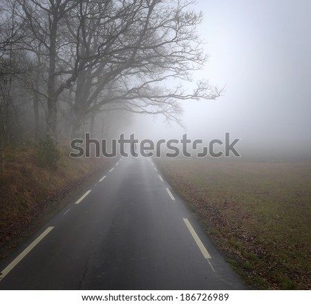 Road into landscape with a person walking in haze