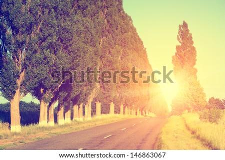 road landscape