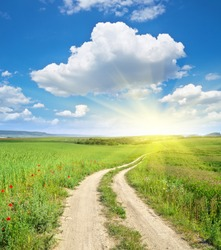 Road lane and deep blue sky. Green meadow and spring flowers.