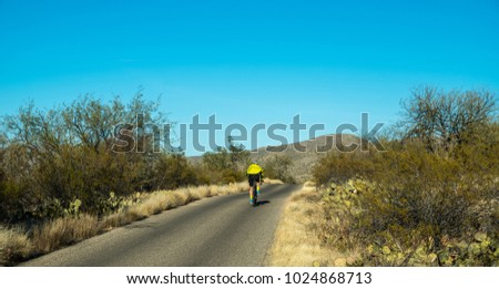 road leading through saguaro...