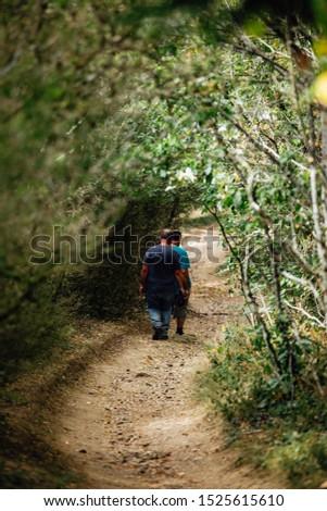 Road near Le Perreon n France Foto stock ©