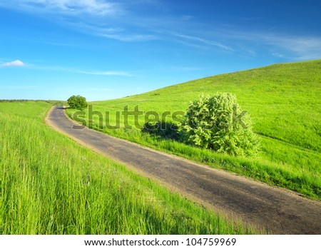 Road on green meadow. Bright natural landscape
